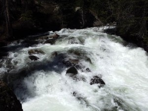Whitewater in the stream.